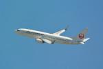 kaz787さんが、伊丹空港で撮影したJALエクスプレス 737-846の航空フォト(写真)