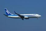 resocha747さんが、岩国空港で撮影した全日空 737-881の航空フォト(写真)