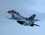 new_2106さんが、岩国空港で撮影した航空自衛隊 F-2Bの航空フォト(写真)