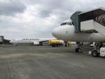 しろとらさんが、奄美空港で撮影した日本航空 737-846の航空フォト(写真)