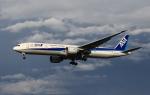 MOHICANさんが、成田国際空港で撮影した全日空 777-381/ERの航空フォト(写真)