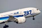 すかいぶるー✈︎さんが、羽田空港で撮影した全日空 787-881の航空フォト(写真)