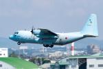 きゅうさんが、名古屋飛行場で撮影した航空自衛隊 C-130H Herculesの航空フォト(写真)