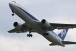 かねやんさんが、熊本空港で撮影した全日空 767-381/ERの航空フォト(写真)