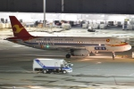 Wings Flapさんが、羽田空港で撮影した天津航空 A320-232の航空フォト(写真)