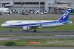 Wings Flapさんが、羽田空港で撮影した全日空 A320-211の航空フォト(写真)