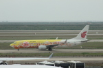 Rsaさんが、上海浦東国際空港で撮影した中国国際航空 737-89Lの航空フォト(写真)