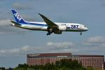 NIKKOREX Fさんが、成田国際空港で撮影した全日空 787-8 Dreamlinerの航空フォト(写真)