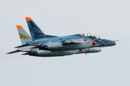hantonovさんが、浜松基地で撮影した航空自衛隊 T-4の航空フォト(写真)