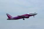 resocha747さんが、成田国際空港で撮影したピーチ A320-214の航空フォト(写真)