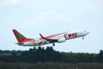 resocha747さんが、成田国際空港で撮影したティーウェイ航空 737-8Q8の航空フォト(写真)
