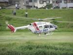 kamonhasiさんが、静岡ヘリポートで撮影したセントラルヘリコプターサービス BK117C-2の航空フォト(写真)