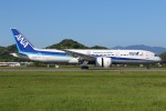 JA882Aさんが、松山空港で撮影した全日空 787-9の航空フォト(写真)