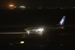 の~さんが、中部国際空港で撮影した全日空 737-881の航空フォト(写真)