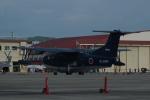 ふるぴーさんが、岩国空港で撮影した海上自衛隊 US-2の航空フォト(写真)