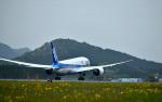 HS888さんが、鹿児島空港で撮影した全日空 787-881の航空フォト(写真)