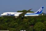 あしゅーさんが、福岡空港で撮影した全日空 787-881の航空フォト(写真)