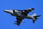 松乃一茶さんが、岩国空港で撮影したアメリカ海兵隊 AV-8B Harrier II+の航空フォト(写真)