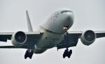 kamerajiijiさんが、成田国際空港で撮影したパキスタン国際航空 777-2Q8/ERの航空フォト(写真)