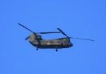 tetuさんが、札幌飛行場で撮影した陸上自衛隊 CH-47Jの航空フォト(写真)