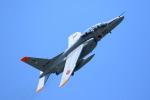 Kanarinaさんが、築城基地で撮影した航空自衛隊 T-4の航空フォト(写真)