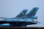 Kanarinaさんが、築城基地で撮影した航空自衛隊 F-2Aの航空フォト(写真)