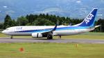誘喜さんが、鹿児島空港で撮影した全日空 737-881の航空フォト(写真)