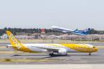 岡崎美合さんが、成田国際空港で撮影したスクート 787-9の航空フォト(写真)