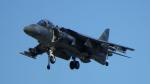 SVMさんが、岩国空港で撮影したアメリカ海兵隊 AV-8B Harrier II+の航空フォト(写真)