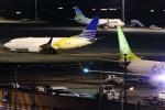 多摩川崎2Kさんが、羽田空港で撮影したロイヤル・ジェット 737-7Z5 BBJの航空フォト(写真)