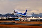 ばやっしゅさんが、伊丹空港で撮影した全日空 787-881の航空フォト(写真)