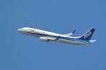 kaz787さんが、伊丹空港で撮影した全日空 737-881の航空フォト(写真)