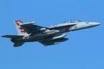 tomoMTさんが、厚木飛行場で撮影したアメリカ海軍 EA-18G Growlerの航空フォト(写真)
