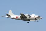 banshee02さんが、厚木飛行場で撮影した海上自衛隊 UP-3Cの航空フォト(写真)