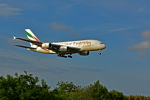 NIKKOREX Fさんが、成田国際空港で撮影したエミレーツ航空 A380-861の航空フォト(写真)