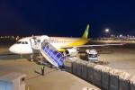 krozさんが、成田国際空港で撮影したバニラエア A320-214の航空フォト(写真)