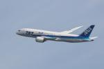 おぺちゃんさんが、伊丹空港で撮影した全日空 787-8 Dreamlinerの航空フォト(写真)
