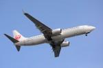 Dream Skyさんが、羽田空港で撮影したJALエクスプレス 737-846の航空フォト(写真)
