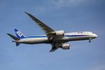 Dream Skyさんが、羽田空港で撮影した全日空 787-9の航空フォト(写真)