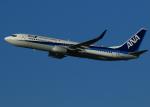 suke55さんが、伊丹空港で撮影した全日空 737-881の航空フォト(写真)