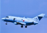 takamaruさんが、名古屋飛行場で撮影した航空自衛隊 U-125A(Hawker 800)の航空フォト(写真)