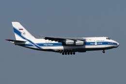 コージーさんが、成田国際空港で撮影したヴォルガ・ドニエプル航空 An-124-100 Ruslanの航空フォト(写真)