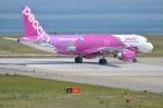 amagoさんが、関西国際空港で撮影したピーチ A320-214の航空フォト(写真)