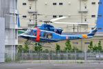 はるかのパパさんが、東京ヘリポートで撮影した警視庁 412EPの航空フォト(写真)