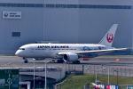 tsubasa0423さんが、羽田空港で撮影した日本航空 787-8 Dreamlinerの航空フォト(写真)