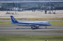 meijeanさんが、羽田空港で撮影した全日空 A320-211の航空フォト(写真)