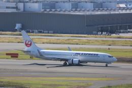 meijeanさんが、羽田空港で撮影したJALエクスプレス 737-846の航空フォト(写真)