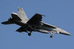 banshee02さんが、厚木飛行場で撮影したアメリカ海軍 F/A-18E Super Hornetの航空フォト(写真)