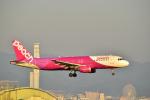 うめたろうさんが、関西国際空港で撮影したピーチ A320-214の航空フォト(写真)