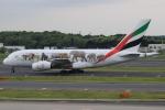 キイロイトリ1005fさんが、成田国際空港で撮影したエミレーツ航空 A380-861の航空フォト(写真)